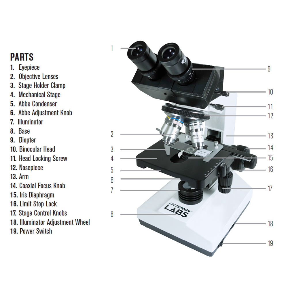 compound microscope Compound microscope definition: an instrument for magnifying small objects,  consisting of a lens of short focal length | meaning, pronunciation, translations.